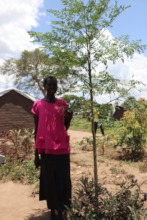 A refugee participant with a moringa seedling