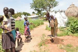 Planting seedlings in the refugee settlement