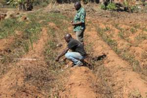 Measuring the dimensions of the land