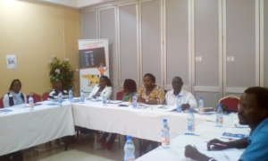 A cross section of District Coordinators: Training