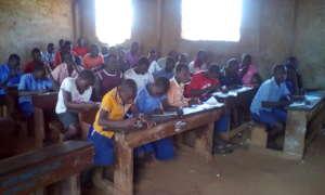 Providing weekly Examinations