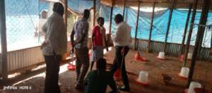 The Team survey how to conduct poultry farming