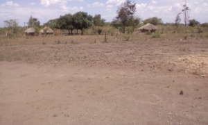 One of many more area in need of water