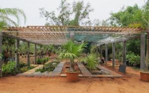 Botanical Garden - green house