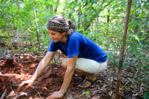 Planting evergreen trees with love and care