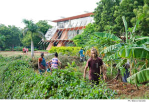 Permaculture Garden at Townhall City center