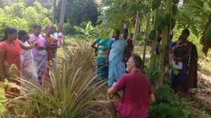 Training in organic farming