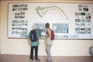 Regeneration of city estuary - to nature park