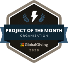 Project of the Month: February 2019