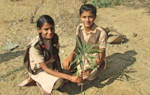 Planting A Tree! Save the Earth !
