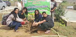 A small Effort; Plant A Tree! Save the Earth !