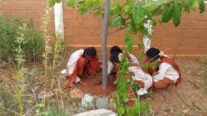 Girl students participate in environment activity
