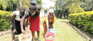 Farmers with buckets of honey for processing