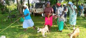 Widows gifted with goats