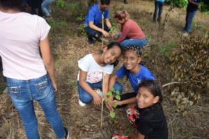 National Reforestation Day