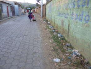 Street Pollution