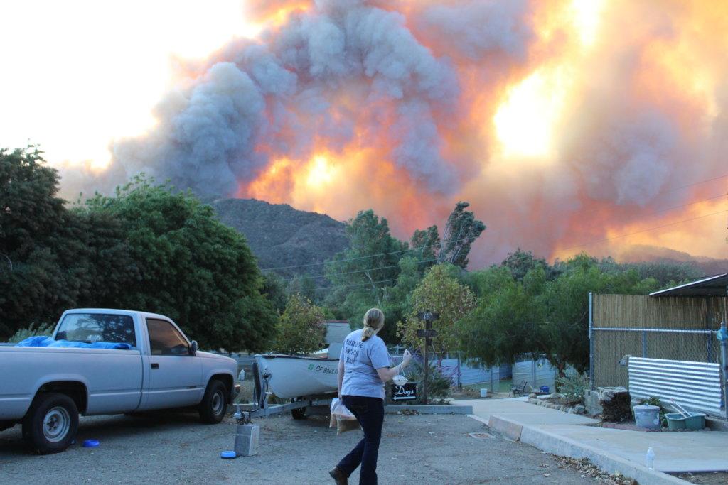 Animal Disaster Response in Ventura County