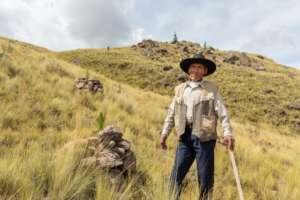 Mr. Rodriguez  planted Three thousand trees