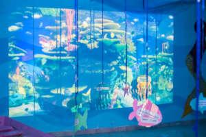 immersive underwater environment