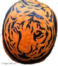 Example Tiger Pumpkin