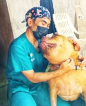 Help Suffering Animals Get Medical Treatment