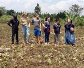 Volunteers helping to garden