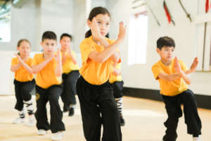 Help Canada Represent at the Shaolin Olympics 2018