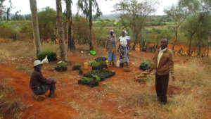 Agriculture lessons for community members