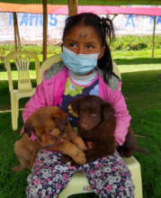 Girl waiting for the vets with her puppies