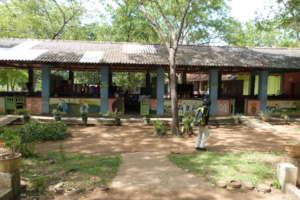 Elementary school with Montessori