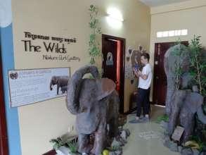 Construction of Elephant Exhibition