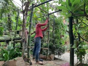 Developments in the Learning Garden