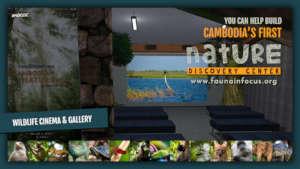 The Wildlife Cinema & Gallery