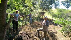 Composting for soil fertilizer