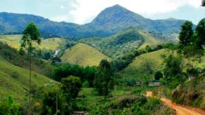 Landscape of the community of Graminha