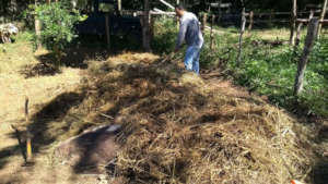 Storing grass to make compost