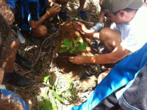 Reforestation Site-KSTR Volunteers planting a tree