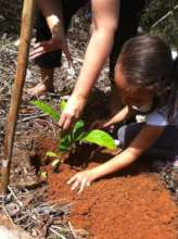 Kid Planting a Tree in our Reforestation Project