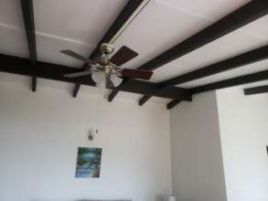 House #2- Newly installed fan and detailed ceiling