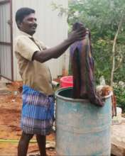 Washerman hand washing