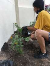 Planting at the Anti Human Trafficking center