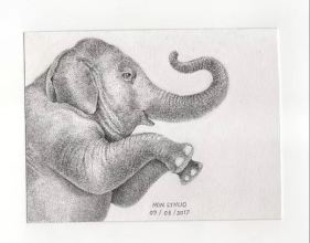 Student drawing of an Elephant