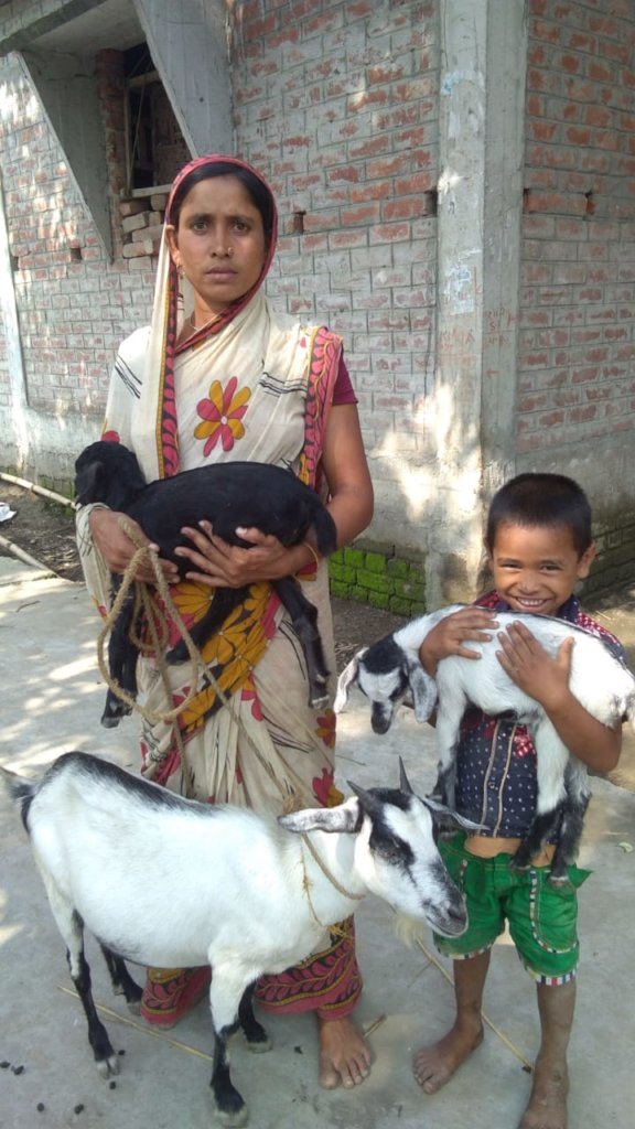 Goat for livelihood support for poor women