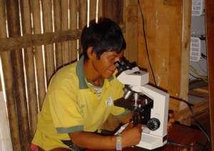 Samuel (Kayama) identifies malarial strains