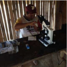 Community microscopist diagnosing type of malaria