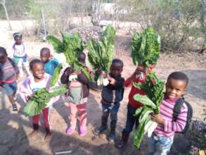 Food grown for the children from the earth