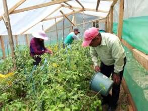 Working in the Community Garden