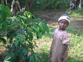 JRCCA Promote local farming of coffee