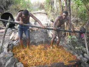 Palm oil Production involved Manual Labor