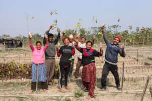 Employees of our Tree-Planting Partner